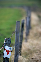 Europe/France/Auvergne/15/Cantal/La Planèze d'Allanche: Détail de la clture pour les vaches