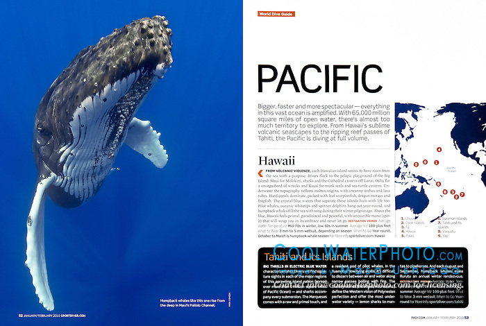 PADI Sport Diver Magazine, January/February 2010, full page, editorial use, USA, Image ID: Humpback-Whale-