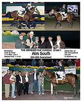 Aim South winning The Arabian Cup Classic at Delaware Park on 11/4/2007