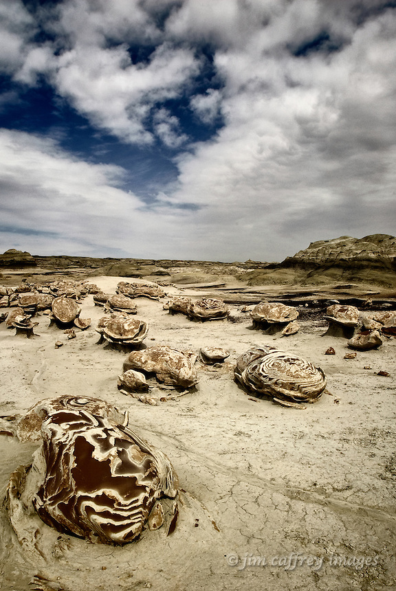Unusual, eroded rocks in the Egg Garden of the Bisti Wilderness in northwestern New Mexico.