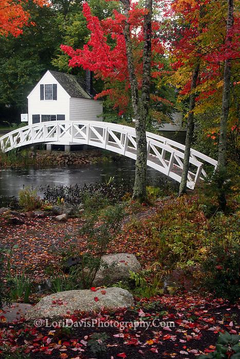 #L36 Autumn At The Somesville Footbridge