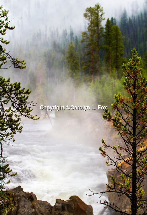 Steam rises above the Firehole River in Yellowstone.