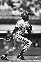 Wilton Guerrero of the Albuquerque Dukes at Cashman Field in Las Vegas, Nevada during the 1996 season. (Larry Goren/Four Seam Images)