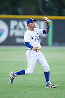 Burlington Royals shortstop Marten Gasparini (44) catches a fly ball in shallow left field during the game against the Johnson City Cardinals at Burlington Athletic Park on July 14, 2014 in Burlington, North Carolina.  The Cardinals defeated the Royals 9-4.  (Brian Westerholt/Four Seam Images)