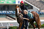SHA TIN,HONG KONG-APRIL 29: The United States,trained by Robert Hickmott,ridden by the jockey,Brett Prebble,prepares for  the Audemars Piguet QEII Cup at Sha Tin Racecourse on April 29,2017 in Sha Tin,New Territories,Hong Kong (Photo by Kaz Ishida/Eclipse Sportswire/Getty Images)