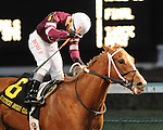 Tapiture and jockey Ricardo Santana win the Kentucky Jockey Club at Churchill Downs, 11-30-13, for trainer Steve Asmussen and owner Ron Winchell.