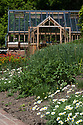 Greenhouse and garden, mid May. Planting includes Anthemis cupaniana, Geum 'Fire Opal', and Euphorbia oblongata.