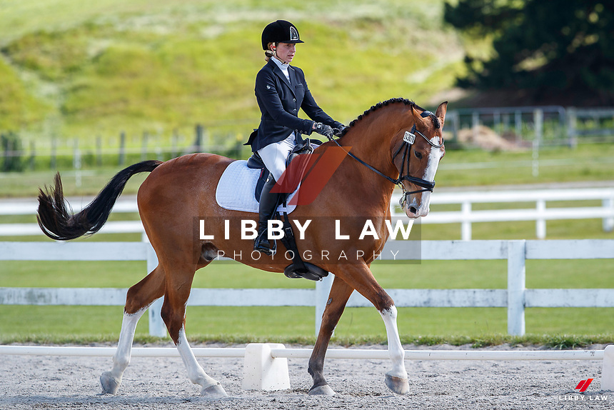 NZL-Amy Arnott rides Rata Mill Jefferson. 2020 NZL-Bates Saddles NZ Dressage Championships. NEC Taupo. Thursday 19 November 2020. Copyright Photo: Libby Law Photography