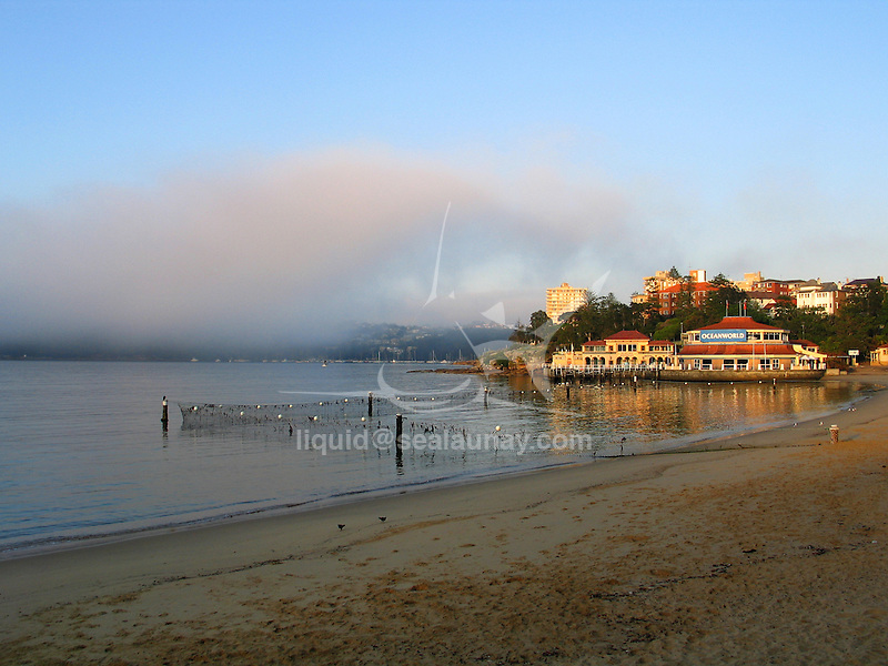 Early morning on the beah with a shark net at Manly Cove  with on the background Ocean World Manly.