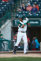 Kelvin Alarcon (9) of the Fort Wayne TinCaps at bat against the Bowling Green Hot Rods at Parkview Field on August 20, 2019 in Fort Wayne, Indiana. The Hot Rods defeated the TinCaps 6-5. (Brian Westerholt/Four Seam Images)