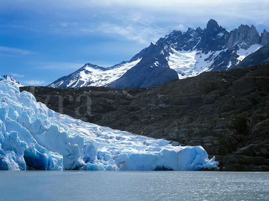 GREY GLACIER enters GREY LAKE in TORRES DEL PAINE NATIONAL PARK - PATAGONIA, CHILE