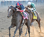 Tonalist (no. 8), ridden by Joel Rosario and trained by Christophe Clement, wins the 96th running of the grade 1 Jockey Club Gold Cup Invitational Stakes for three year olds and upward on September 27, 2014 at Belmont Park in Elmont, New York.  (Bob Mayberger/Eclipse Sportswire)