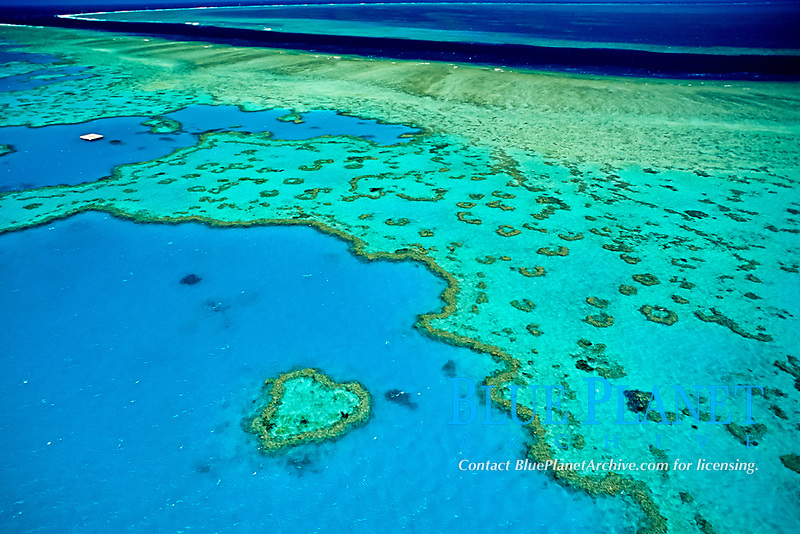 aerial, Heart Reef, Great Barrier Reef, Queensland, Australia