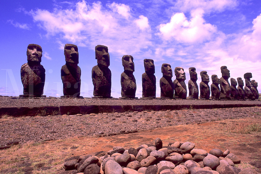 Beautiful Moai Statues Ahu Tongariki Platform in Easter Island during Tapati Festival Rapa Nui