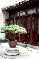 Suzhou, a cultural and historical city in east China's Jiangsu Province, is celebrated around the world for its elegant gardens. The gardens of Suzhou are the epitome of landscaping art for the private garden, with their delicacy, intimacy, and simplicity.