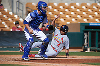 Surprise Saguaros shortstop Aledmys Diaz (4) slides into home behind catcher Kyle Farmer during an Arizona Fall League game against the Glendale Desert Dogs on October 24, 2015 at Camelback Ranch in Glendale, Arizona.  Surprise defeated Glendale 18-3.  (Mike Janes/Four Seam Images)