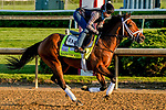 April 27, 2021: Sainthood, trained by trainer Todd Pletcher, exercises in preparation for the Kentucky Derby at Churchill Downs on April 27, 2021 in Louisville, Kentucky. Scott Serio/Eclipse Sportswire/CSM
