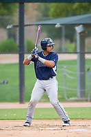 AZL Padres catcher Luis Campusano (29) at bat against the AZL White Sox on July 31, 2017 at Camelback Ranch in Glendale, Arizona. AZL White Sox defeated the AZL Padres 2-1. (Zachary Lucy/Four Seam Images)