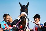 FUCHU,JAPAN-MAY 20: Almond Eye,ridden by Christophe Lemaire, after winning the Yushun Himba (Japanese Oaks) at Tokyo Racecourse on May 20,2018 in Fuchu,Tokyo,Japan (Photo by Kaz Ishida/Eclipse Sportswire/Getty Images)