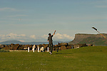 Man flying a kite on the recreation area above Ballycastle Beach, Ballycastle, County Antrim, Northern Ireland