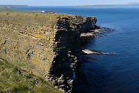 North coast, cliffs close to John o' Groat<br /> Scotland May 8th - 19th. Trip across Scotland<br /> Foto Samantha Zucchi Insidefoto