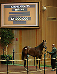 LEXINGTON, KY - September 12: Hip # 48 medaglia d'Oro - Spring Party Colt consigned by Taylor Made sales Agency, sold for $1,000,000, to M.V. Magnier, becoming the highest price yearling on the first day of the September Yearling sale at Keeneland.  September 12, 2016 in Lexington, KY (Photo by Candice Chavez/Eclipse Sportswire/Getty Images)