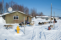 Hans Gatt leaves the Kaltag on a sunny afternoon during Iditarod 2009
