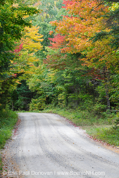 Zealand Road in Bethlehem, New Hampshire USA during the autumn months. This is a seasonal road closed during the snow season. Parts of this road follow the old Zealand Valley Railroad, which was a logging railroad in operation from 1886-1897.