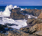 Surf, Salt Point State Park, Sonoma County, California