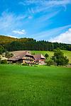 Germany, Baden-Wurttemberg, Black Forest, Oberwolfach: typical single farmhouse landscape in Central Black Forest | Deutschland, Baden-Wuerttemberg, Schwarzwald, Oberwolfach: typische Einzelhof-Landschaft im Mittleren Schwarzwald