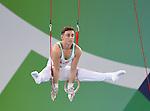 Gymnastics Day 5