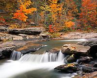 Fall color and waterfall along Stony Clove Creek; Catskill Park and Preserve, NY