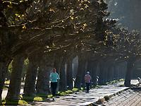 Uferpromenade von Konstanz, Baden-Württemberg, Deutschland, Europa<br /> lakeside promenade, Constance, Baden-Württemberg, Germany, Europe