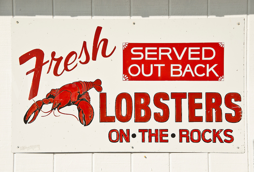 Fresh lobster sign, Maine, USA