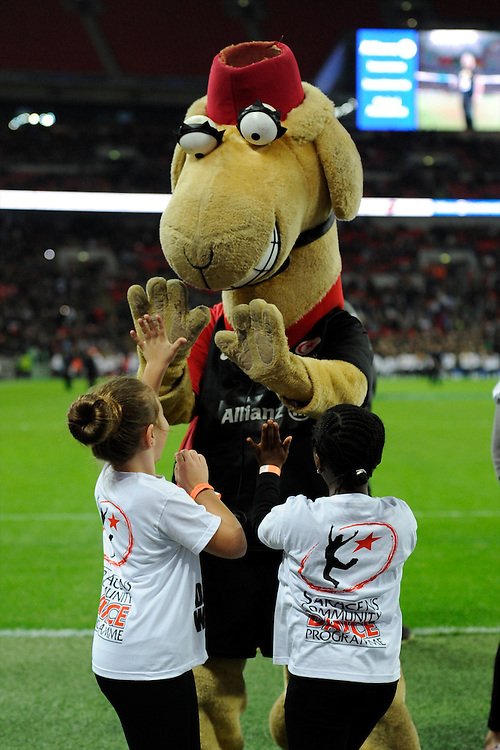 20131018 Copyright onEdition 2013©<br /> Free for editorial use image, please credit: onEdition<br /> <br /> Sarrie the camel entertains young fans during the Heineken Cup match between Saracens and Stade Toulousain at Wembley Stadium on Friday 18th October 2013 (Photo by Rob Munro)<br /> <br /> For press contacts contact: Sam Feasey at brandRapport on M: +44 (0)7717 757114 E: SFeasey@brand-rapport.com<br /> <br /> If you require a higher resolution image or you have any other onEdition photographic enquiries, please contact onEdition on 0845 900 2 900 or email info@onEdition.com<br /> This image is copyright onEdition 2013©.<br /> This image has been supplied by onEdition and must be credited onEdition. The author is asserting his full Moral rights in relation to the publication of this image. Rights for onward transmission of any image or file is not granted or implied. Changing or deleting Copyright information is illegal as specified in the Copyright, Design and Patents Act 1988. If you are in any way unsure of your right to publish this image please contact onEdition on 0845 900 2 900 or email info@onEdition.com