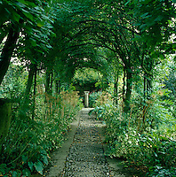 A cobbled path beneath a shady pergola is lined with ferns and hostas with an old-fashioned sundial at one end of the long vista