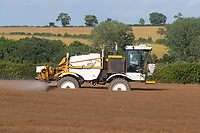 13-7-2021 A contractor desiccating linseed<br /> ©Tim Scrivener Photographer 07850 303986<br />      ....Covering Agriculture In The UK....