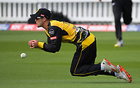Peter Younghusband drops a catch during the men's Dream11 Super Smash cricket match between the Wellington Firebirds and Northern Knights at Basin Reserve in Wellington, New Zealand on Saturday, 9 January 2021. Photo: Dave Lintott / lintottphoto.co.nz