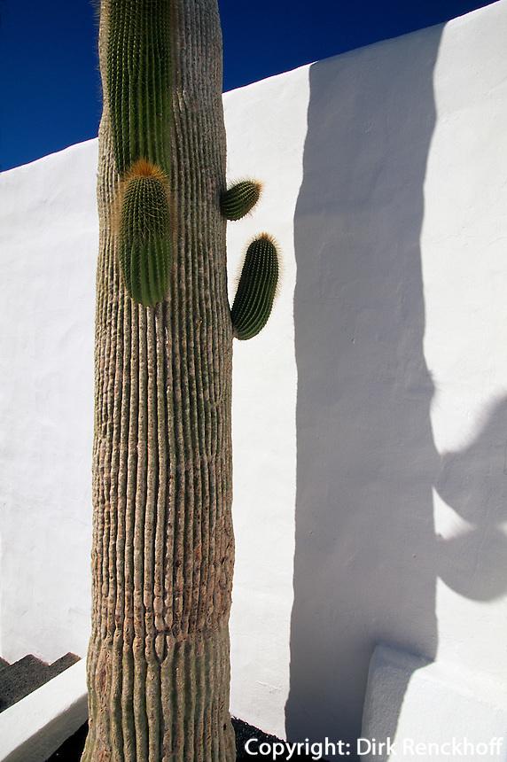 Wohnhaus von Cesar Manrique in Taro de Tahiche, Lanzarote,  kanarische Inseln, Spanien