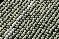 Futtermiete: EUROPA, DEUTSCHLAND, MECKLENBURG VORPOMMERN  (GERMANY), 06.10.2008:Deutschland, Mecklenburg Vorpommern,  Landwirtschaft,  Mecklenburg-Vorpommern, Deutschland, Futter, Miete, Europa,  Land, Folie, Kunststofffolie, Plastik, Plastikfolie, Sack, Saecke, Plasticksack, Plasticksaecke, Heu, Heuernte, Landwirtschaft, Ballen, Heuballen, eingeschweisste, eingeschweisstes, eingeschweisst, Futter, Viehfutter, Viehhaltung, Rinderfutter, Rinderhaltung, Fleischwirtschaft, Michwirtschaft, Gras, Weide, heuen, maehen, Kunststoff, verpackt, Verpackung, Linie, Reihe, viele, Winterfutter, Luftbild