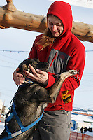 Rohn Buser plays with Berretta, one of the dogs run to Nome by Alan Stevens at the finish line in Nome on Saturday March 21, 2015 during Iditarod 2015.  <br /> <br /> (C) Jeff Schultz/SchultzPhoto.com - ALL RIGHTS RESERVED<br />  DUPLICATION  PROHIBITED  WITHOUT  PERMISSION