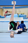 Disability Championships 2014