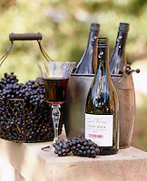 A detail of how to display wine bottles with a vinyard inspired theme