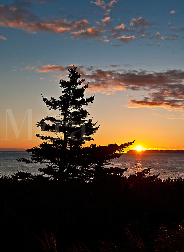 Coastal sunrise, Lubec, Maine, ME, USA