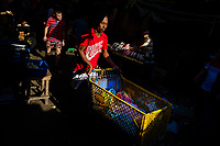 An Afro-Colombian carrier pushes a customized supermarket cart, loaded with purchased goods, in the market of Bazurto in Cartagena, Colombia, 7 December 2018. Far from the touristy places in the walled city, a colorful, vibrant labyrinth of Cartagena's biggest open-air market sprawls to the Caribbean seashore. Here, in the dark and narrow alleys, full of scrappy stalls selling fruit, vegetables and herbs, meat and raw fish, with smelly garbage on the floor and loud reggaeton music in the air, the African roots of Colombia are manifested.