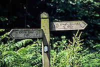 England, Offa's Dyke Footpath Trail Sign, Bilingual, near Kington.