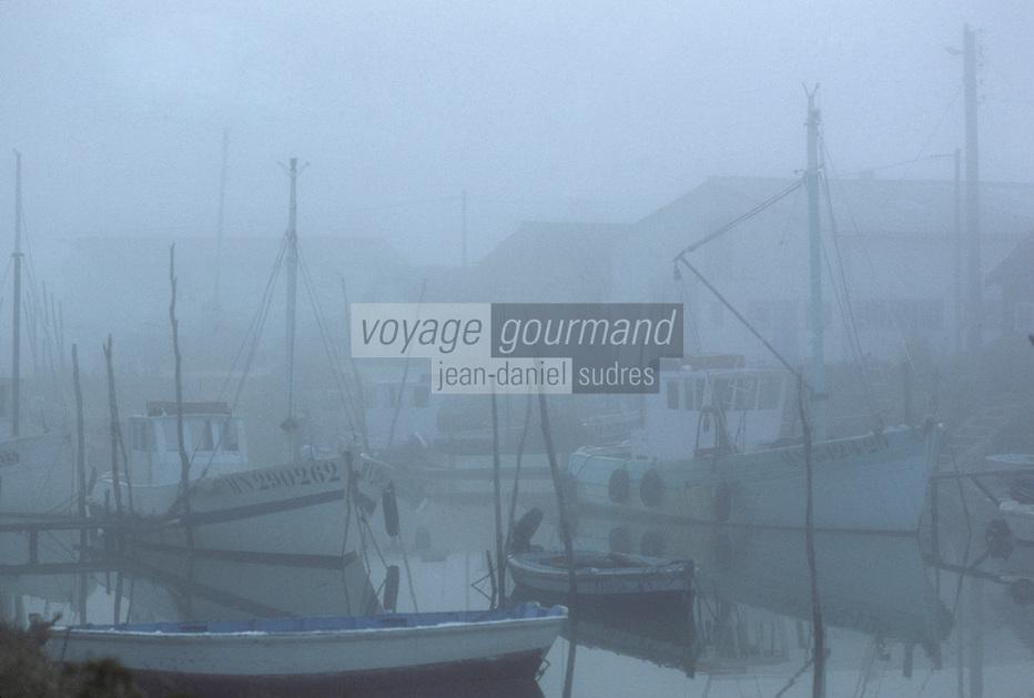 Europe/France/Poitou-Charentes/17/Charente-Maritime/Marennes : Port ostréicole à la Cayenne