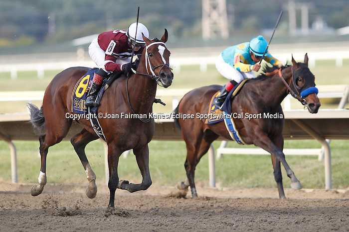 September 20, 2014:  Untapable, Rosie Napravnik up, wins the Grade I Cotillion Stakes at Parx Racing in Bensalem, PA. Trainer is Steve Asmussen. Owner is Winchell Thoroughbreds. Jojo Warrior (inside) was second. Joan Fairman Kanes/ESW/CSM