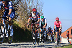 The peloton including Alexander Kristoff (NOR) UAE Team Emirates gives chase on Oude Kwaremtont during the 73rd edition of Kuurne-Brussel-Kuurne 2021 running 197km from Kuurne to Kuurne, Belgium. 28th February 2021  <br /> Picture: Serge Waldbillig | Cyclefile<br /> <br /> All photos usage must carry mandatory copyright credit (© Cyclefile | Serge Waldbillig)