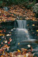 Indian Creek<br /> Hanging Rock State Park<br /> Blue Ridge Mountains<br /> North Carolina